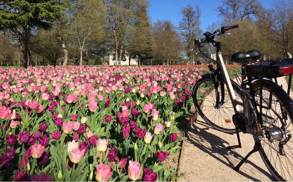 Escapade à vélo Chambord – Cheverny – Chaumont